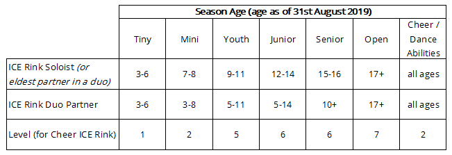 ICE Rink age groupings and levels